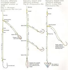 how to rig for saltwater pier fishing - google search | fishing, Fishing Bait