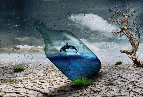 Desert, Bottle, Dolphin, Wind, Art, Creativity, Nature: