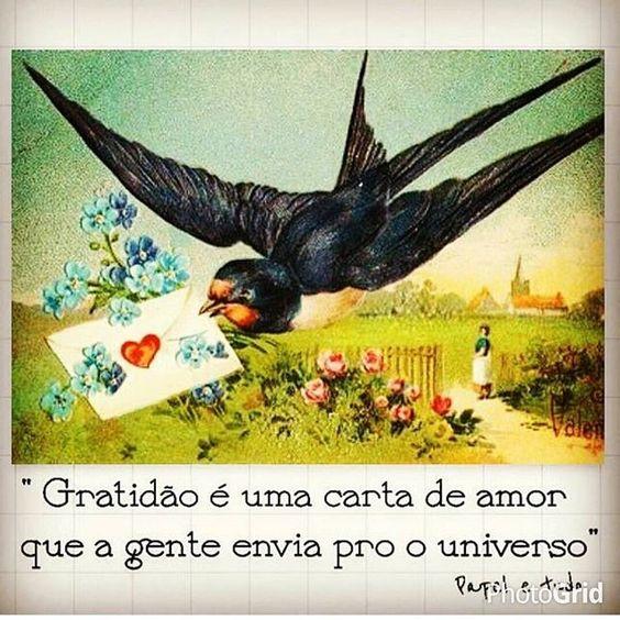 Agradecer nunca é demais♥ Bom dia!!! Excelente quarta feira pra…