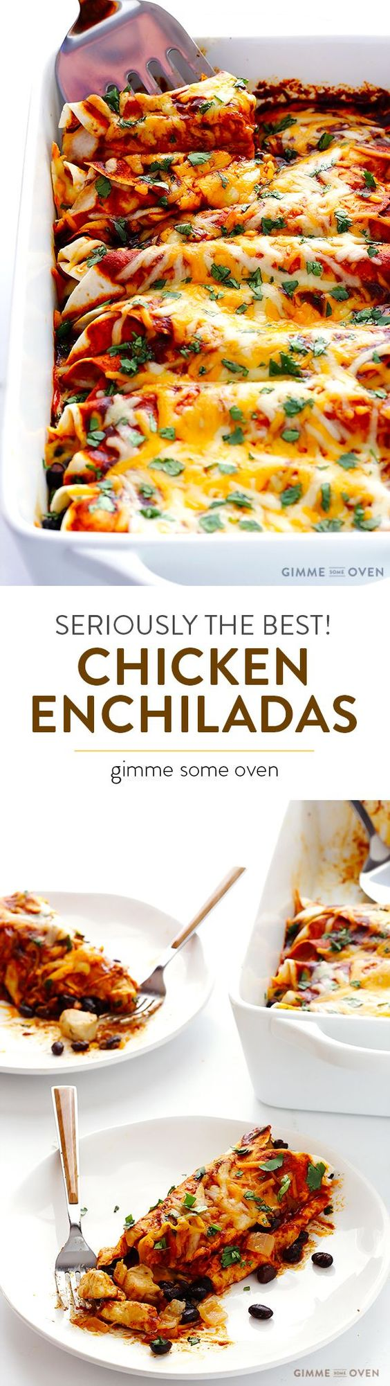This seriously is my favorite chicken enchiladas recipe, and it's all thanks to a special (and easy!) homemade sauce.  My friends all agree!! | gimmesomeoven.com