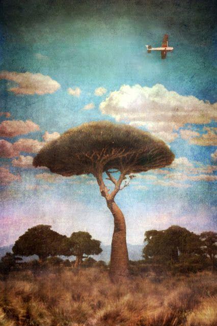 ARTE DE VIVIR: CREATIVA MARTA BIELSA - Fotografía y pintura Digital