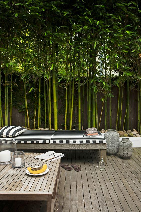 Brise-vue bambou et clôture pour plus d'intimité dans le jardin