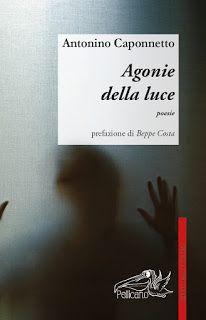 Arabeschi di luce: Antonino Caponnetto: un viaggiatore alla ricerca d...
