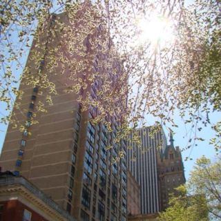 Central park view <3