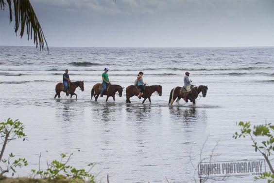 Roatan, Horseback Riding, Bonish Photo, Every Miles A Memory