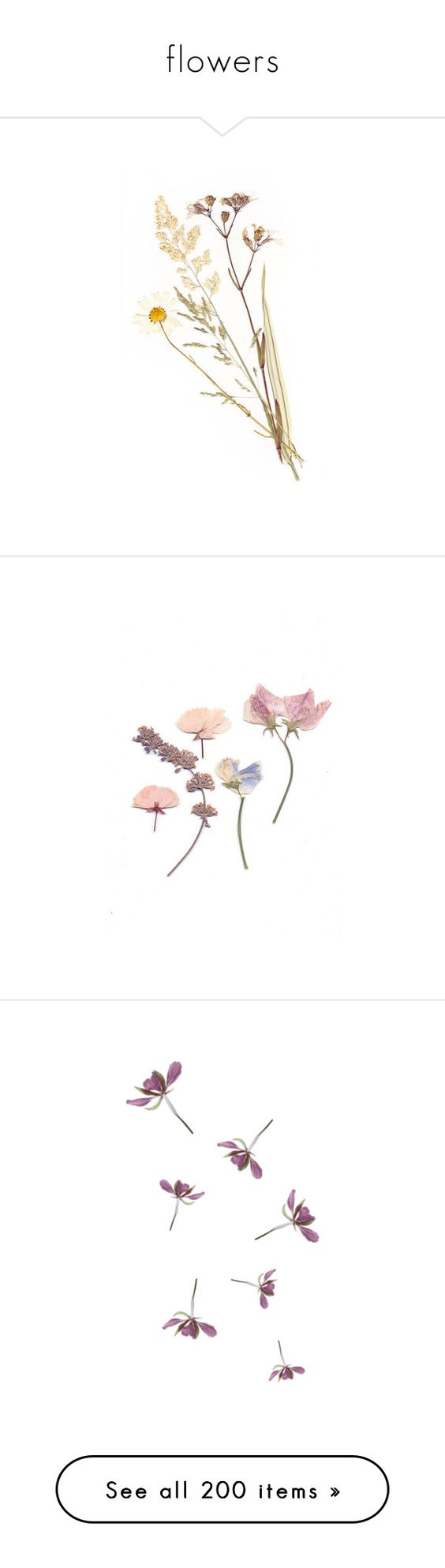 """""""flowers"""" by randomn3ss ❤ liked on Polyvore featuring fillers, flowers, plants, nature, decoration, backgrounds, text, quotes, saying and phrase"""