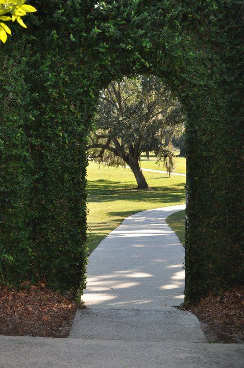Brookgreen Gardens Myrtle Beach, SC | Places Iu0027ve Been | Pinterest | Myrtle  Beach Sc, Beach And Carolina Usa