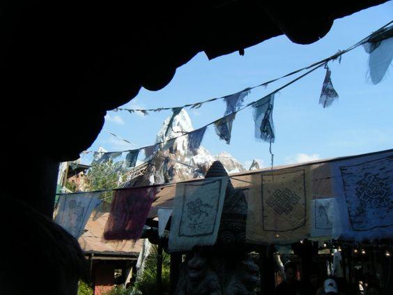 Disney World, 2010. Animal Kingdom.