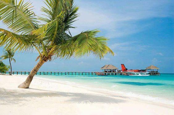 Away j'ai wart at Lux . Maldives