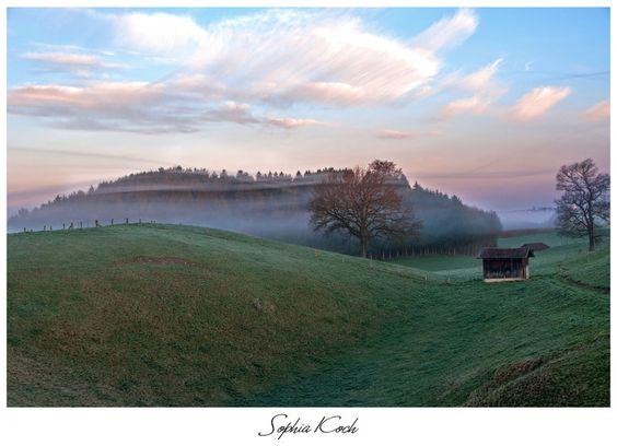 The perfect morning by Soffeline.deviantart.com on @deviantART #officetrends #inspiration #sunrise #photo