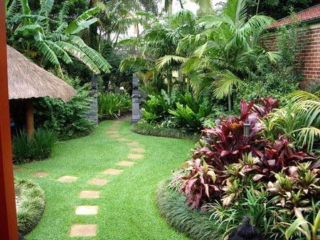 Tropical backyards well maintained tropical backyard for Tropical garden design
