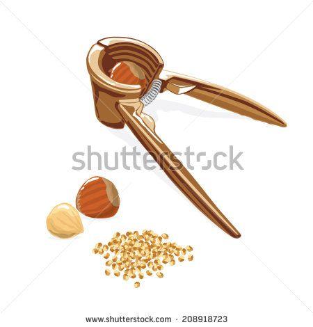 Varieties of hazelnut  #crashed #hazel #food #findikkiran #sweet