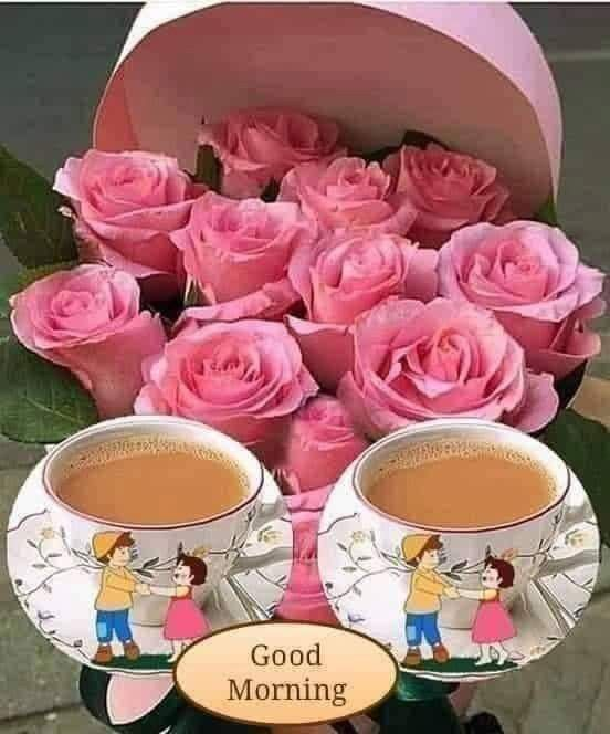 Pin By Ushadas Kusuma On Picture In 2020 Rose Flowers Pictures