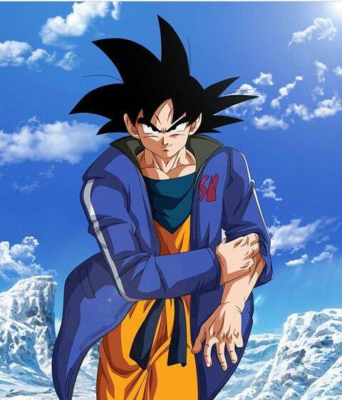 Goku S New Blue Jacket Anime Dragon Ball Desenhos De Super Herois