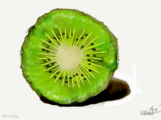 kiwi drawing - Google Search