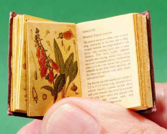 """Dollhouse Miniature Book """"Poisonous Plants"""" Readable Alchemy Wizard 
