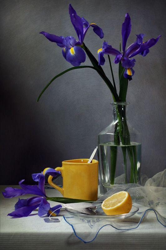 photo: ...   photographer: Jolanta Brigere   WWW.PHOTODOM.COM: