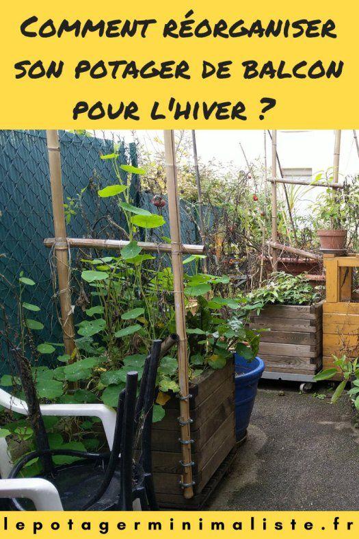 Comment Reorganiser Son Potager De Balcon Pour L Hiver Potager