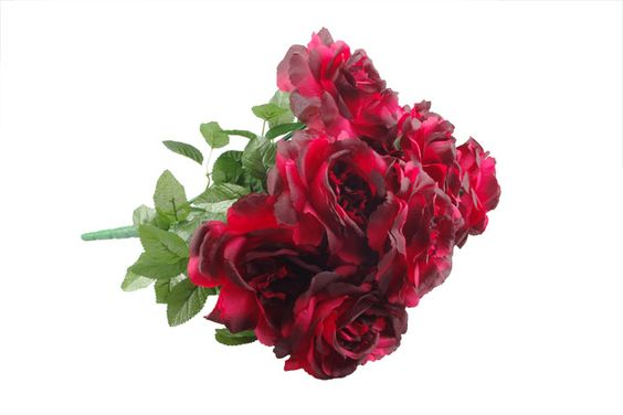 Ewa&Ja, bukiet róż w kolorze czerwonym, 49cm