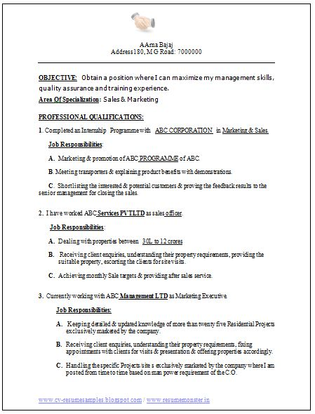 professional curriculum vitae    resume template for all job seekers excellent resume sample of a