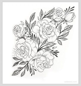 45 Beautiful Flower Drawings And Realistic Color Pencil Drawings Flower Drawing Roses Drawing Beautiful Flower Drawings