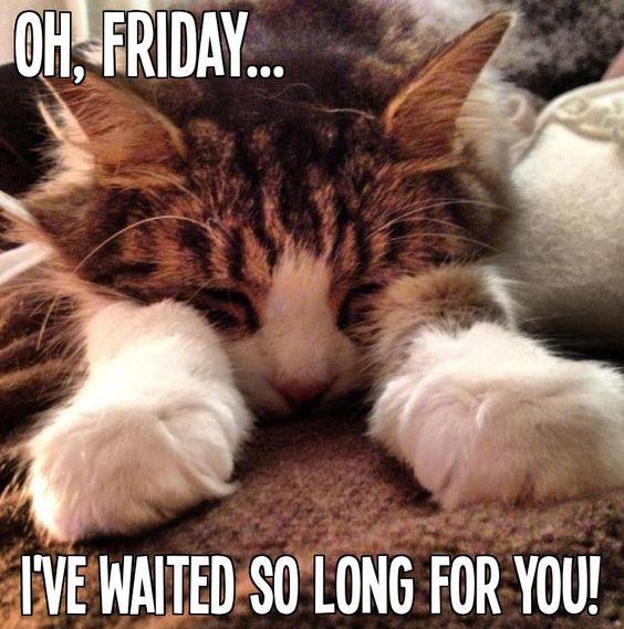 Oh, Friday...