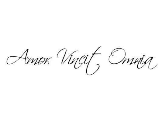 Amor Vincit Omnia Love Conquers Amor Conquers