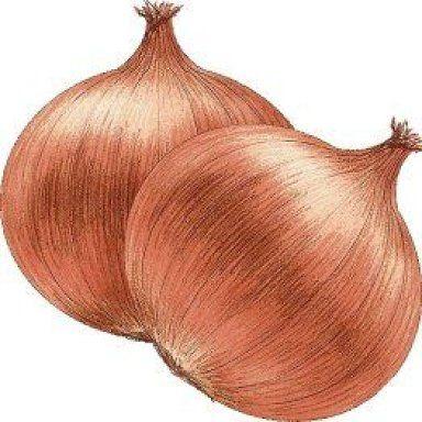 Two Onions - Mis Laminas para Decoupage
