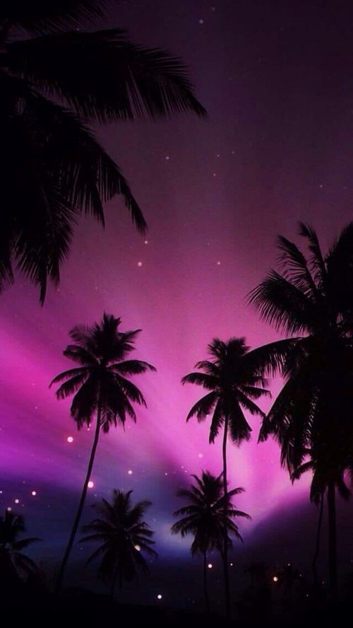 Pink And Purple Image Tree Wallpaper Iphone Iphone Wallpaper Sky Palm Trees Wallpaper