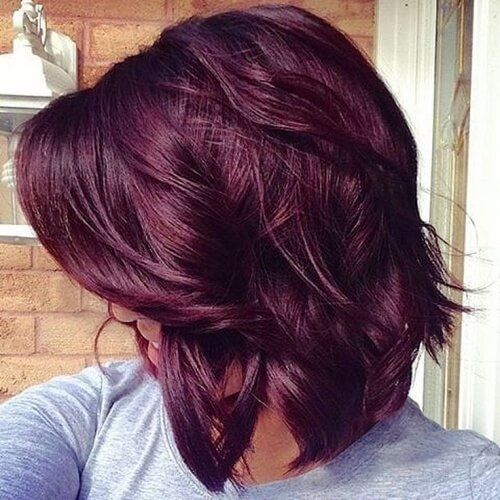 Violet Purple Plum Hair With Images Hair Color Plum Violet Hair Colors Plum Hair
