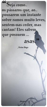 """""""Seja como..  os pássaros que, ao..  pousarem um instante  sobre ramos muito leves,  sentem-nas ceder, mas  cantam! Eles sabem  que possuem ...                        asas.""""                 _Victor Hugo"""