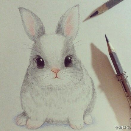 CUTE DRAWING OF A BUNNY: