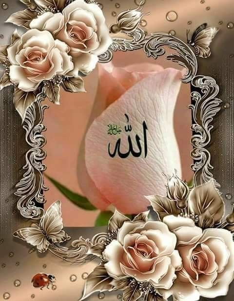 Pin By 7 Sky Llc On Breakfast Receipe In 2020 Allah Wallpaper Islamic Wallpaper Beautiful Flowers Pictures