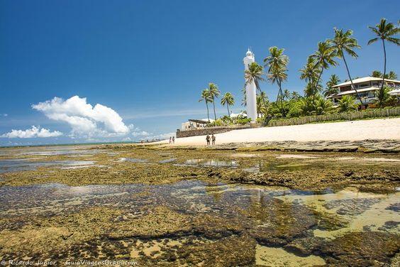 CONHECENDO A PRAIA DO FORTE: Um Lugar Especial da Bahia