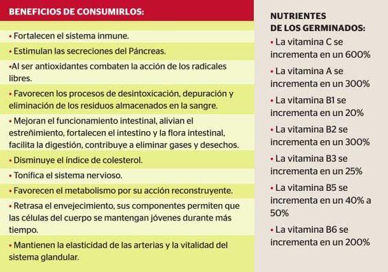 Alimentos doblemente saludables | Germinados