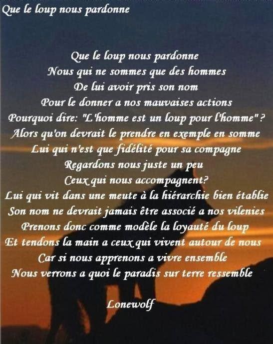 L Homme Est Un Loup Pour L Homme : homme, L'homme, Pardon, Loup., Citation, Pardon,, Loup,