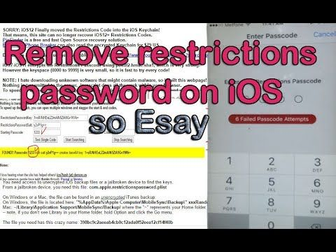 2fff9c4da8f73fb7a3c8b712529783d9 - How To Get Rid Of Restrictions On An Iphone