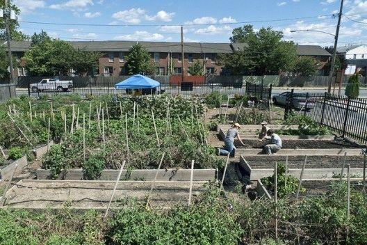 A agricultura urbana como ferramenta de desenvolvimento urbano