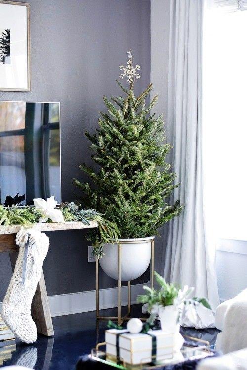 Weihnachtsbaum Im Topf Richtig Pflegen Und Noch Viele Jahre Bewundern Diy Holiday Decor Glam Christmas Decor Christmas Living Rooms
