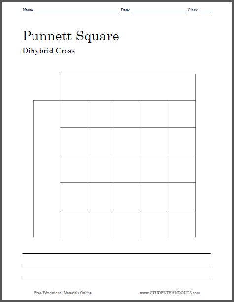 Worksheets Biology Worksheets Pdf punnett square dihybrid cross worksheet free to print pdf file two versions one with a large and four smal