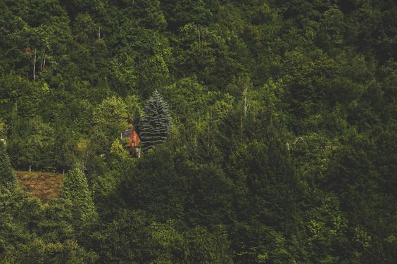 Cabin Porn™          – Cabin in the Dinaric Mountains, Bosnia &...