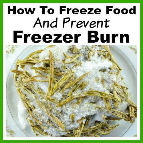 How To Freeze Your Own Food And Prevent Freezer Burn Food