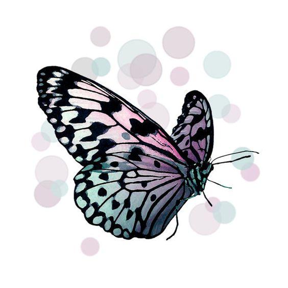 Bokeh Butterfly Print Original Photography Nature Purple by ArtBJC