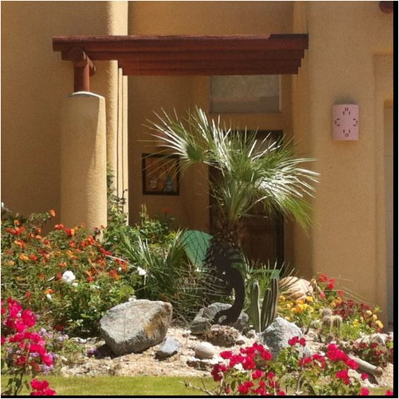Desert Garden Ideas: Beautiful Desert Garden Entry!