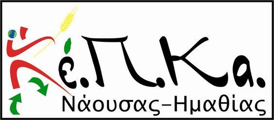 Βασιλόπιτα και απολογισμός του ΚΕΠΚΑ Νάουσας