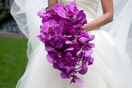 Cascading bouquet of orchids