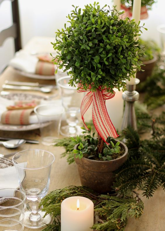 Love the small boxwood toparies set down the table between greens and candlesticks - very cute!