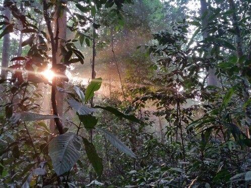 #sunrise #nofilter #malaysia #2015