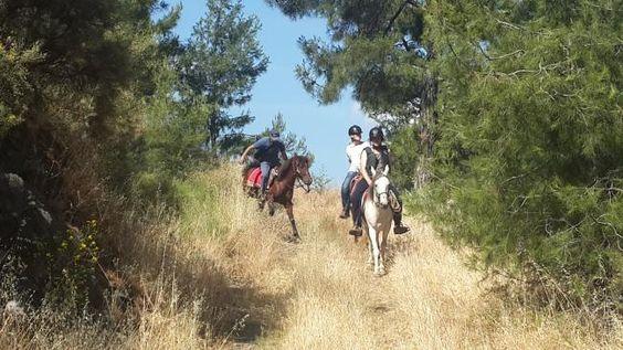 Volkan's Adventures - Dalyan Horse Safari