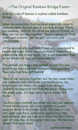 Rainbow Bridge Poem Two